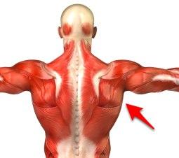Latissimus Dorsi Pain Treatment